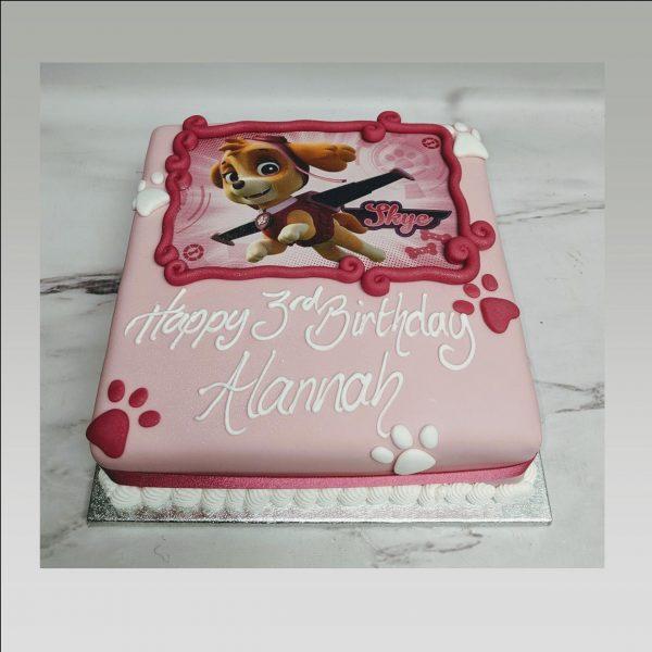 paw patrol cake|skye cake|picture cake